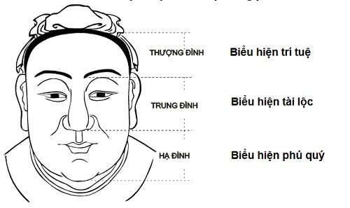 mũi túi mật treo