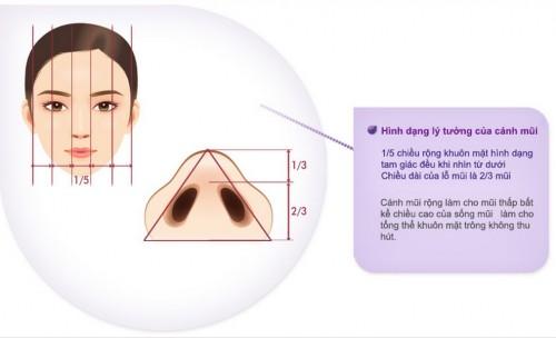 kết quả thu gọn cánh mũi