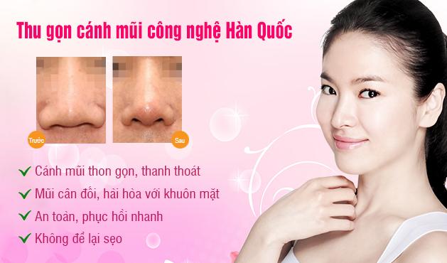 thu-gon-canh-mui3